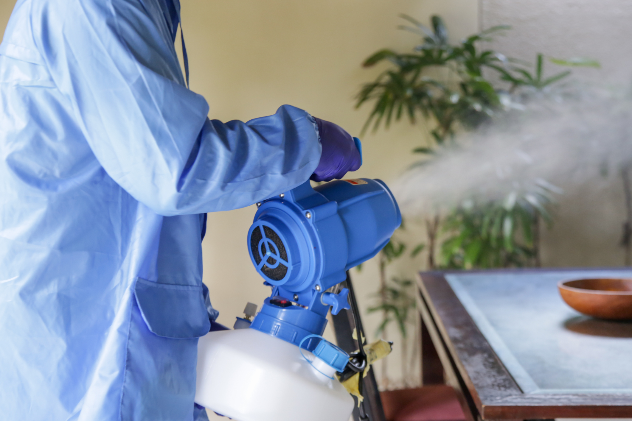 Covid Cleaning - California